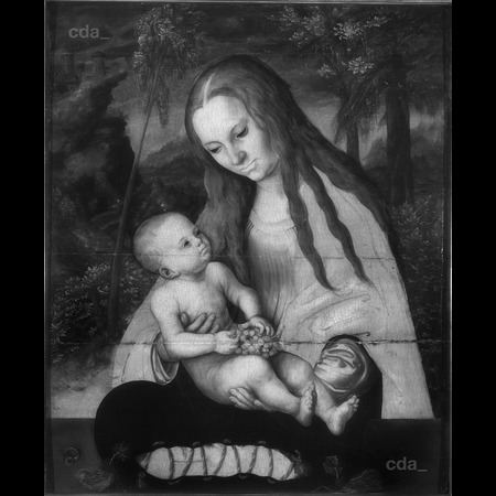 Lucas Cranach the Elder - Muzeum Archidiecezjalne Wroclaw - Virgin and Child (Called the Madonna under the Firs) - Infrared Images